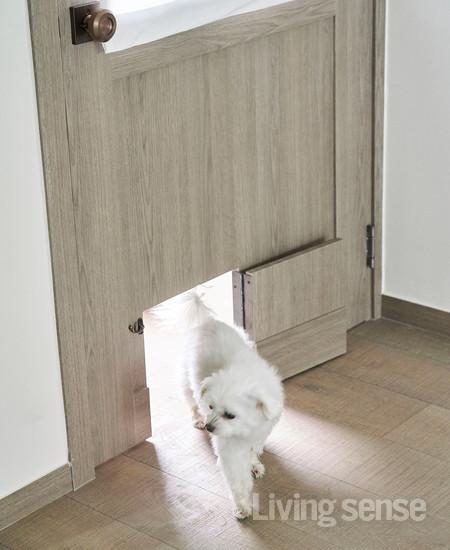 방마다 패턴 유리가 들어간 문을 제작해 채광이 보장된다. 안방 문에는 반려견의 출입구를 따로 만들었다.