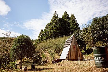 박혜란 대표와 그녀의 가족들은 모두가 함께 즐기는 공유의 숲을 그리며 가꿔나가고 있다.